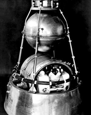Essai avant le lancement dans l'espace du satellite soviétique Spoutnik II  avec un chien qui n'est pas Laïka dans la cabine.