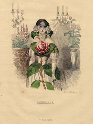 Gravure donnée par Grandville (1803-1847) dans les Fleurs animées.