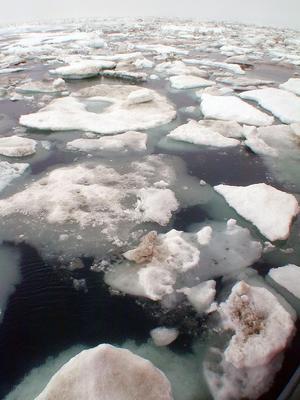L'Arctique est l'une des zones de la planète les plus touchées par le réchauffement climatique, comme l'illustre cette photo prise en août 2005. Les températures actuellement relevées dans la zone correspondent aux normales saisonnières de l'été.