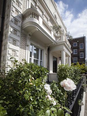 la façade de la maison, côté rue, est soulignée d'une haie de camélias.
