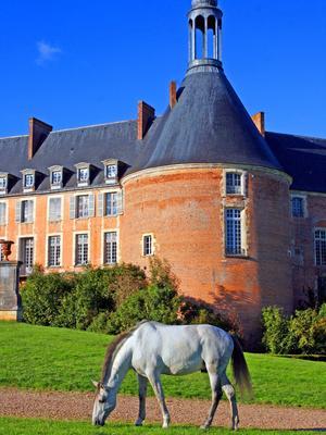Le château de Saint-Fargeau (89).
