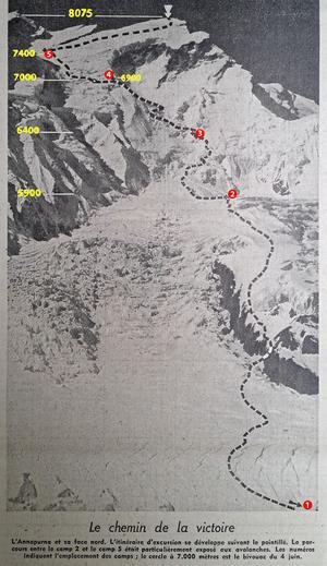 Cette carte, parue dans Le Figaro du 3 août 1950, figure l'Annapurna et sa face nord. En pointillé l'itinéraire de l'excursion. Le numéro des camps et l'altitude ont été colorisés.