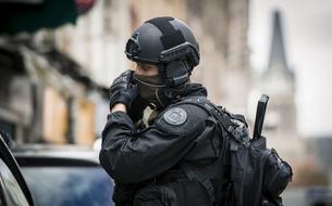 L'efficacité des forces de sécurité intérieure