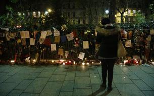 «Les familles des victimes ne s'attendent pas à ce qu'Abdeslam dise la vérité»