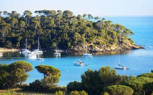 L'or méconnu de la Côte d'Azur