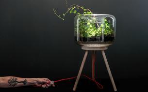 Noël: huit objets intelligents à offrir aux jardiniers