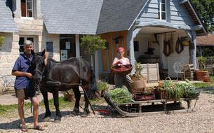 Une petite ferme normande devient un modèle dans le monde entier