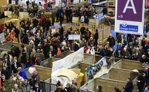 Salon de l'agriculture 2018: les 5 stands où s'attarder