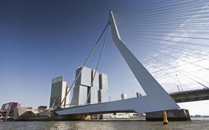 Rotterdam, étonnante capitale de l'architecture