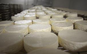 Des députés se mobilisent pour défendre l'appellation AOP «Camembert de Normandie»