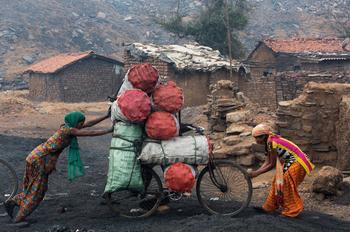 Chaque matin, des grossistes viennent prendre livraison du charbon collecté la veille par les femmes du village de Ganshadia; 250 kg de sacs sont transportés à bicyclette.