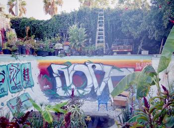 La piscine taguée reconvertie en jardinière géante.