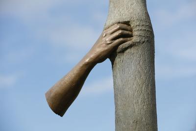 «L'Arbre-chemin», 2012 de l'artiste italien Giuseppe Penone.