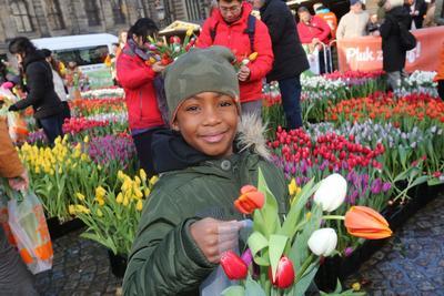 Chaque visiteur pourra emporter son propre bouquet. Photo: VidiPhoto.
