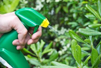 L'exposition aux produits phytosanitaires présente surtout un risque pour l'applicateur, qu'il soit agriculteur ou jardinier.