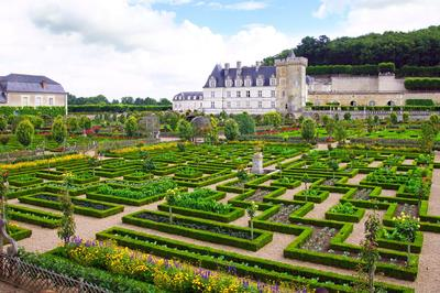 Le célèbre potager fleuri du château de Villandry (Indre-et-Loire) avec ses célèbres bordures de buis.