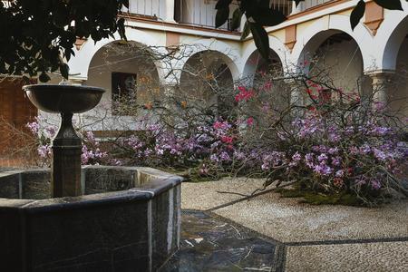 L'estampe chinoise en branches d'yeuses et d'oliviers, ornées de phalænopsis mauves, d'Alfie Lin (Taïwan), à la Fondation Antonio Gala.
