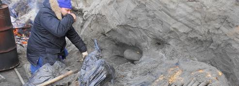Des mammouths chassés par l'homme dans la toundra sibérienne il y a 45.000 ans