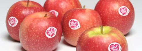 Salon de l'agriculture : les marques font leur show