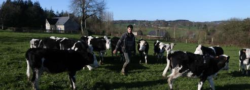 Malgré la crise, l'élevage recrute