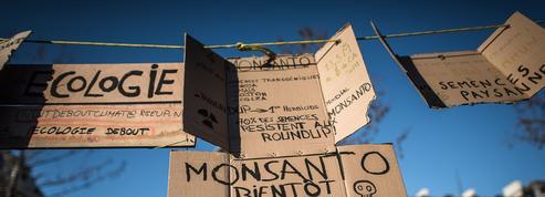 Monsanto, ce géant américain aussi décrié que convoité