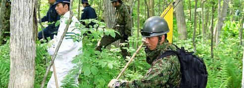 Le petit Japonais abandonné dans la forêt par punition reste introuvable