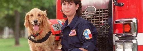 Bretagne, le dernier chien-sauveteur du 11-Septembre, est mort