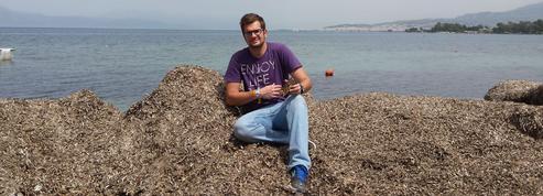 Une coque de smartphone en algues mortes