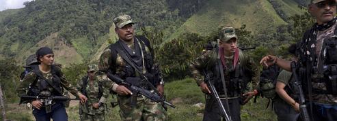Colombie : une Française dans les rangs de la guérilla des Farc