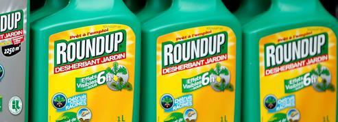 Bruxelles prolonge l'autorisation de vente du Roundup
