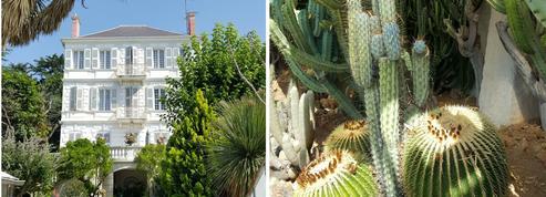 À Fréjus, dans le jardin du roi des cactus