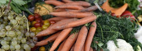 Associations et startups s'unissent contre le gaspillage alimentaire