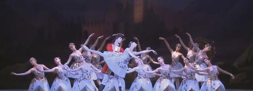 Alexandre Hammoudi, le français de l'American Ballet Theatre