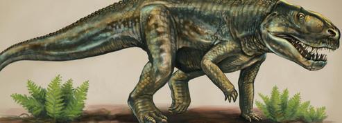 Il y a 212 millions d'années, le Vivaron faisait régner la terreur