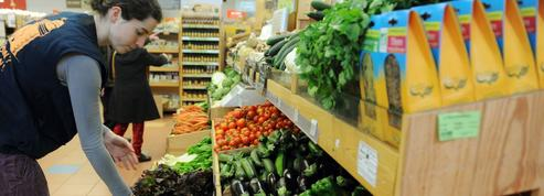 Distributeurs et industriels parient sur le bio