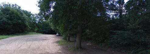 Yvelines : un mari accusé du «crime parfait» comparaît aux assises