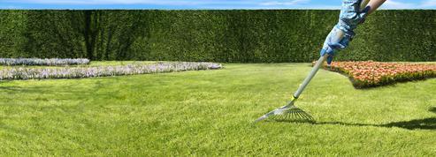 Jardin: il est temps de redonner des couleurs au gazon