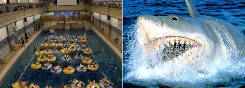 400 spectateurs ont dévoré Les Dents de la mer ... dans une piscine