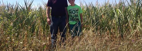 Philippe, éleveur laitier, a choisi le bio pour pouvoir transmettre son exploitation à son fils