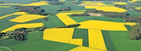 Monsanto maintient le cap dans l'Hexagone