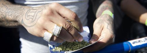 Consommation, saisies, chiffre d'affaires : les chiffres de la drogue en France