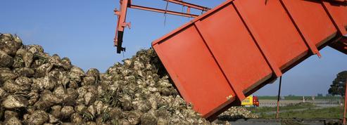 La Commission européenne veut faire marche arrière sur les agrocarburants