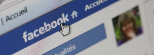 Facebook, outil de communication préféré des distributeurs français sur Internet