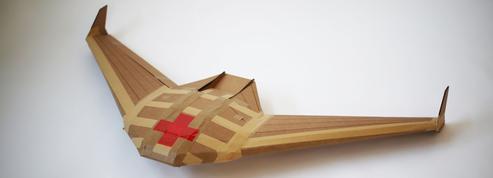 Des avions en carton futurs champions de la distribution d'aide humanitaire?