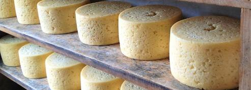 Le premier fromage fait à Paris
