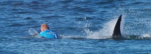 Mick Fanning, le surfeur attaqué par un requin en 2015, retrouve la compétition