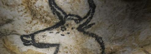 L'Animal et son biographe ,de Stéphanie Hochet: le testament de l'aurochs