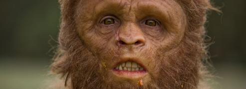 À quoi ressemblaient nos ancêtres ?