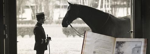 Qui veut sauver l'acte de naissance de l'équitation française?
