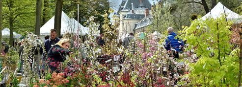 Un parfum de printemps ce week-end à Saint-Jean-de-Beauregard